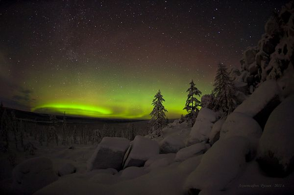january-2011-northern-lights-aurora-borealis-russia_31396_600x450.jpg